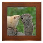 Groundhog Siblings Framed Tile
