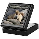 Groundhog Family II Keepsake Box
