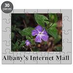 Albany's Internet Mall Retro Puzzle
