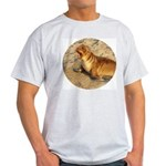 Baby Sea Lion Ash Grey T-Shirt