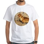 Baby Sea Lion White T-Shirt