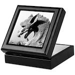 Notre Dame Dragon Gargoyle Keepsake Box
