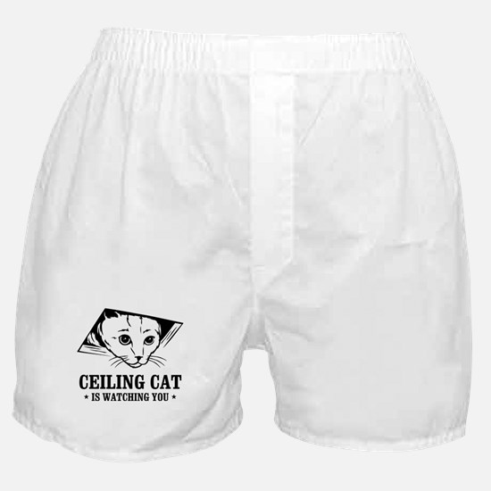 ceiling cat is watching you Boxer Shorts