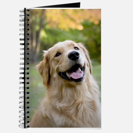 Good Boy Golden Journal
