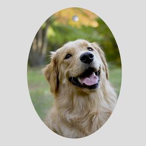 Good Boy Golden Oval Ornament