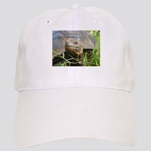 Galapagos Islands Turtle Cap