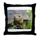 Galapagos Islands Turtle Throw Pillow