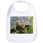 Galapagos Islands Turtle Bib