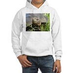 Galapagos Islands Turtle Hooded Sweatshirt