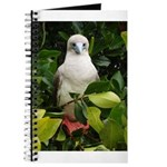 Galapagos Islands Red Footed Journal