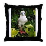 Galapagos Islands Red Footed Throw Pillow