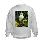 Galapagos Islands Red Footed Kids Sweatshirt