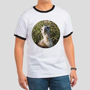 Galapagos Islands Bird Ringer T