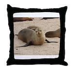 Galapagos Islands Sea Lion Throw Pillow