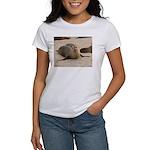 Galapagos Islands Sea Lion Women's T-Shirt