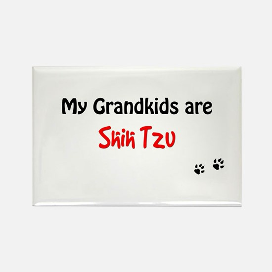 Shih Tzu Grandkids Rectangle Magnet