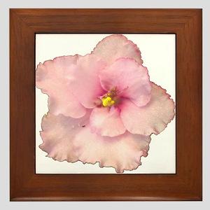 Allegro Lyric (pink) Framed Tile
