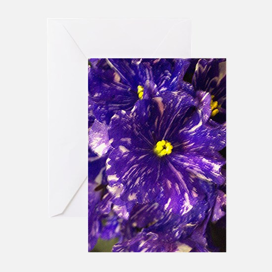 African Violet Greeting Cards (Pk of 10)