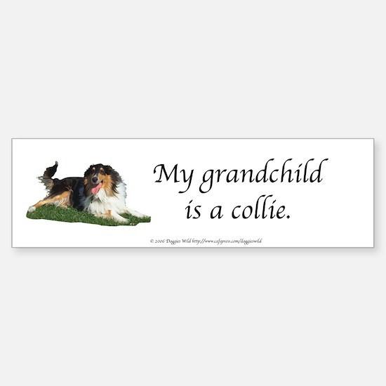 My Grandchild is a Collie Bumper Bumper Bumper Sticker