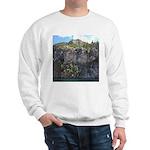 Waterton Cliffs Sweatshirt