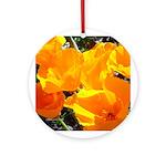 Sf Bay Gifts! Souvenir  Ornament (Round)