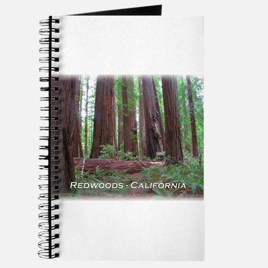Cute Petrified forest national park Journal