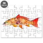 Orange Koi 5 Puzzle