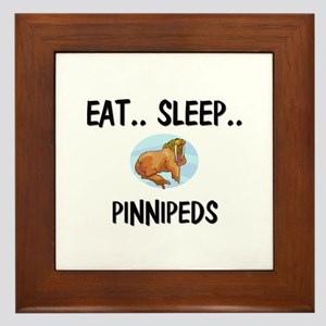 Eat ... Sleep ... PINNIPEDS Framed Tile