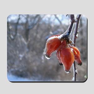 Winter Berries Mousepad
