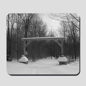 Winter Gate Mousepad