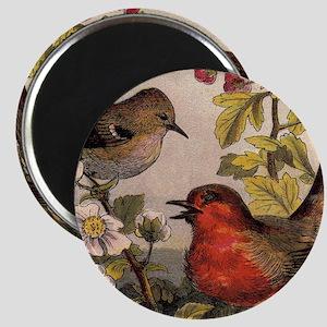 Vintage Robin Birds Magnets