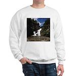 Cameron Falls Waterton Sweatshirt