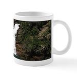 Cameron Falls Waterton Mugs