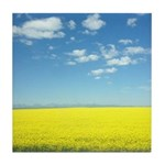 canola fields Tile Coaster