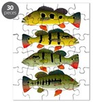 4 Peacock Bass Puzzle