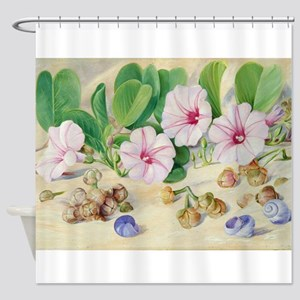 A Common Plant on Sandy Sea-Shores Shower Curtain