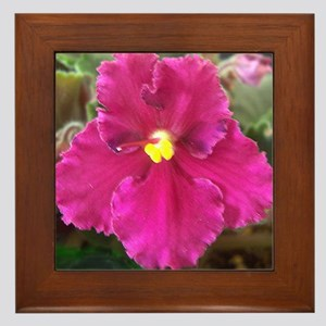 Beautiful Red AV with Foliage Framed Tile