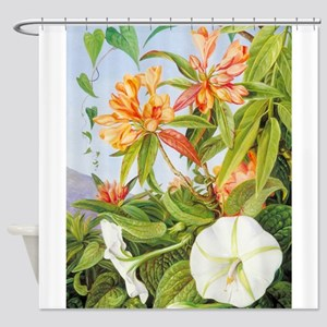 A Javan Rhododendron and Ipomoea Shower Curtain