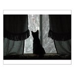 Kitten in Window Small Poster