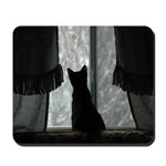 Kitten in Window Mousepad