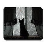 Kitten in Window Mousepad