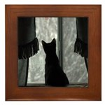 Kitten in Window Framed Tile