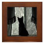Kitten in Window Framed Tile