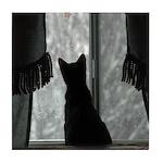 Kitten in Window Tile Coaster
