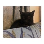 Sleepy Kitty Throw Blanket
