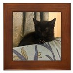 Sleepy Kitty Framed Tile