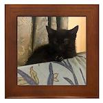 Sleepy Kitty Framed Tile