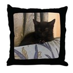 Sleepy Kitty Throw Pillow