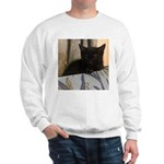 Sleepy Kitty Sweatshirt