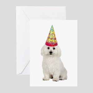 Bichon Frise Birthday Cards (Pk of 20)